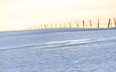 Sommet du Ballon d'Alsace sous la neige